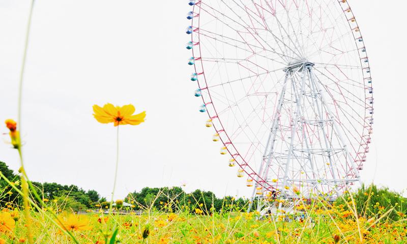 Kasai Rinkai Park by Ajari 2 cropped