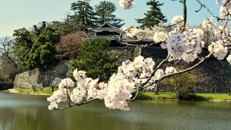 Matsue Castle Moat