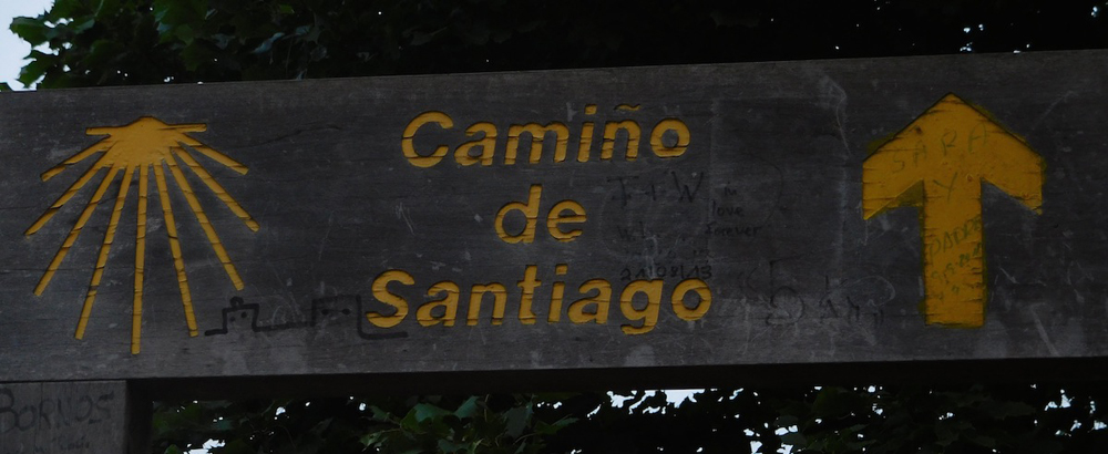 Camino14 cropped