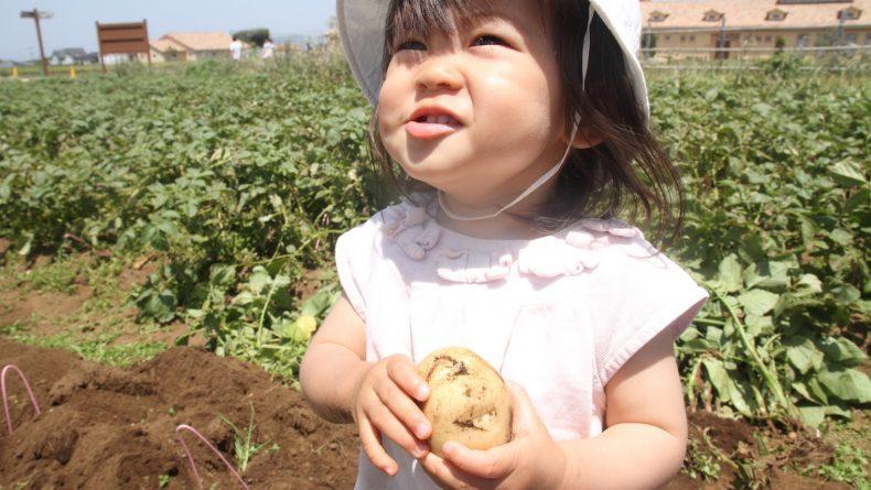 Organic Food Latest Trends At Bio C Bon In Azabu Juban Savvy Tokyo