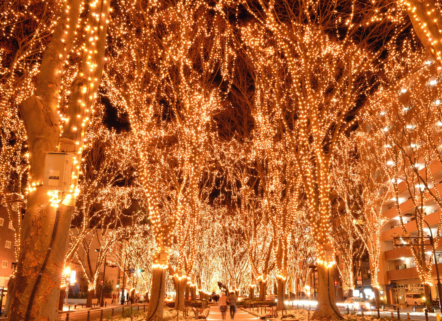 Japanese Christmas.The Ideal Japanese Christmas Date Savvy Tokyo