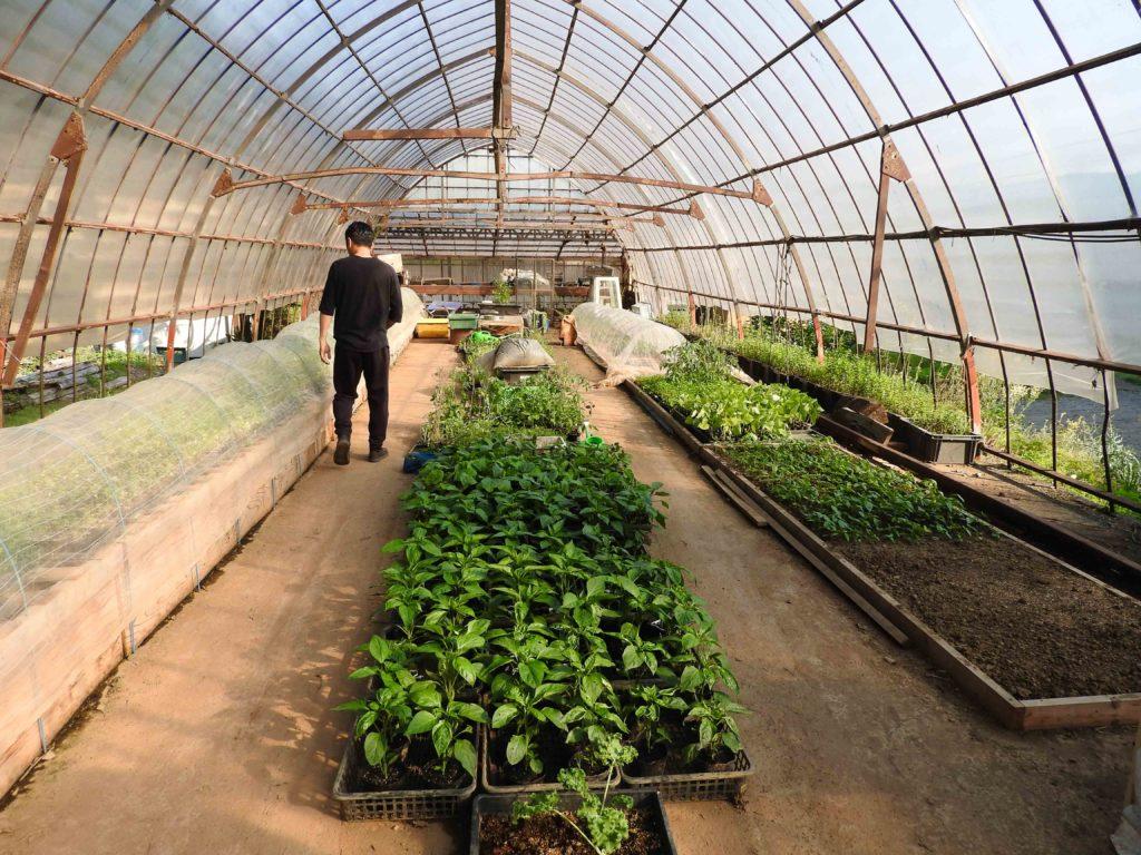 Growing The FarmToTable Concept In Tokyo Savvy Tokyo - Farm to table app
