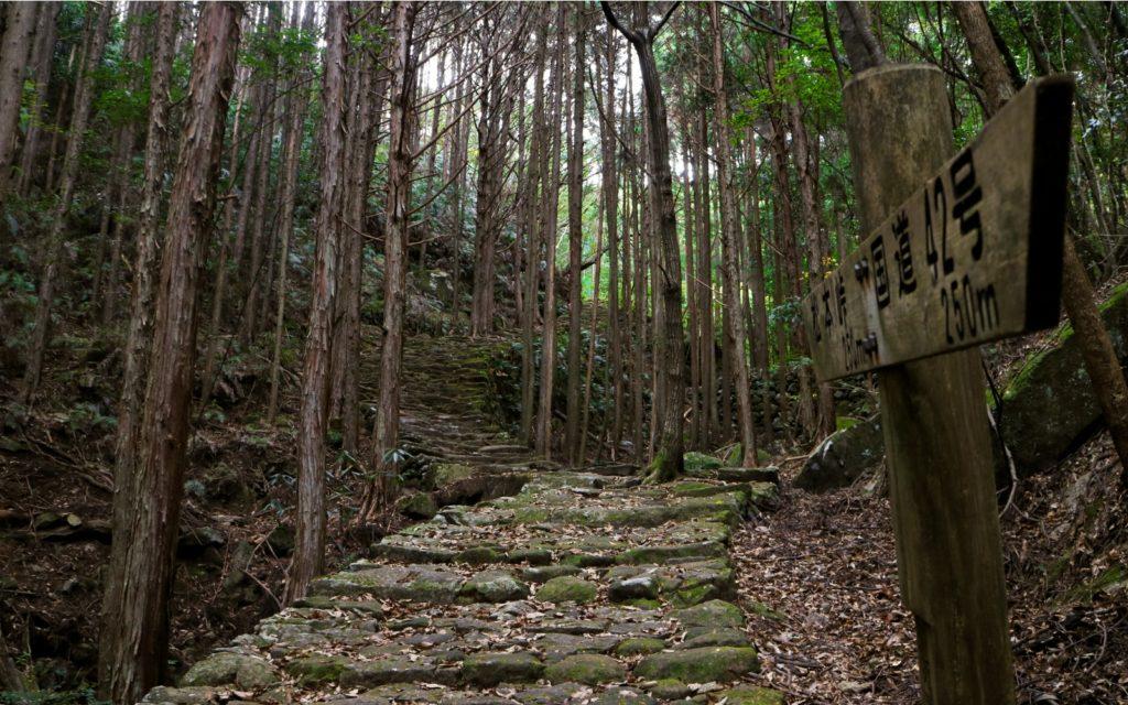 Female solo hiking Mastumoto-toge Pass Kumano Kodo Iseji Route