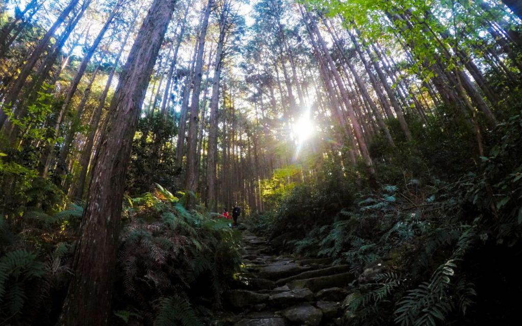 Female solo hiking along the Kumano Kodo Iseji Route Magose-Toge Pass