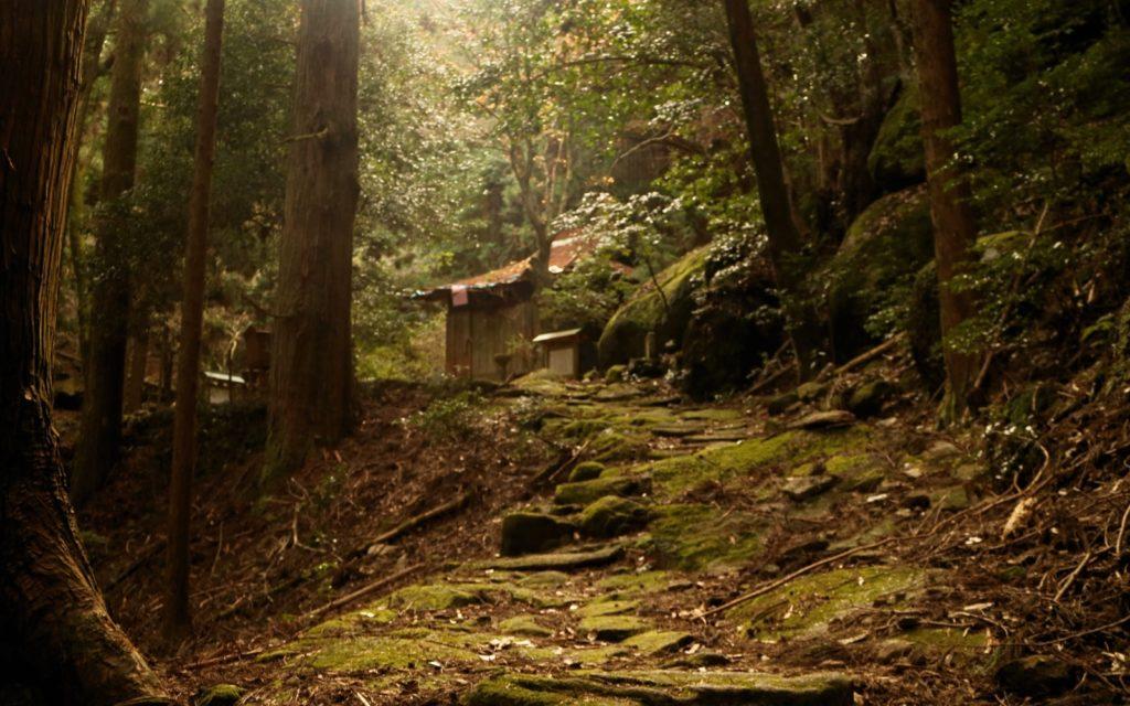 Female solo hiking along the Kumano Kodo Iseji Route Mt. Yakiyama