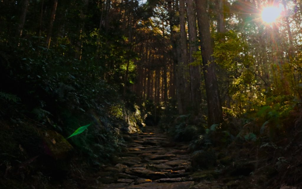 Female solo hiking along the Magose-toge Pass Iseji Route Mie path