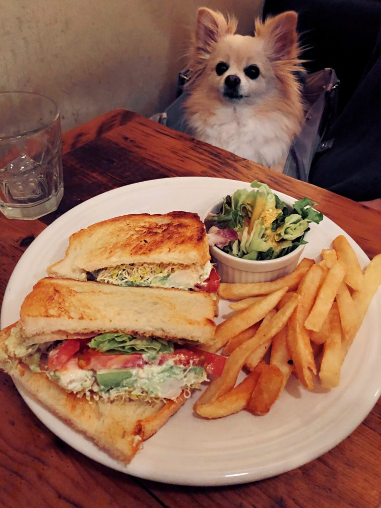 Tokyo's Top 10 Pet Friendly Restaurants And Cafes - Savvy Tokyo