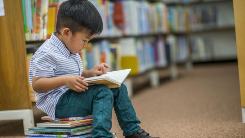 Boy Who Loves Reading