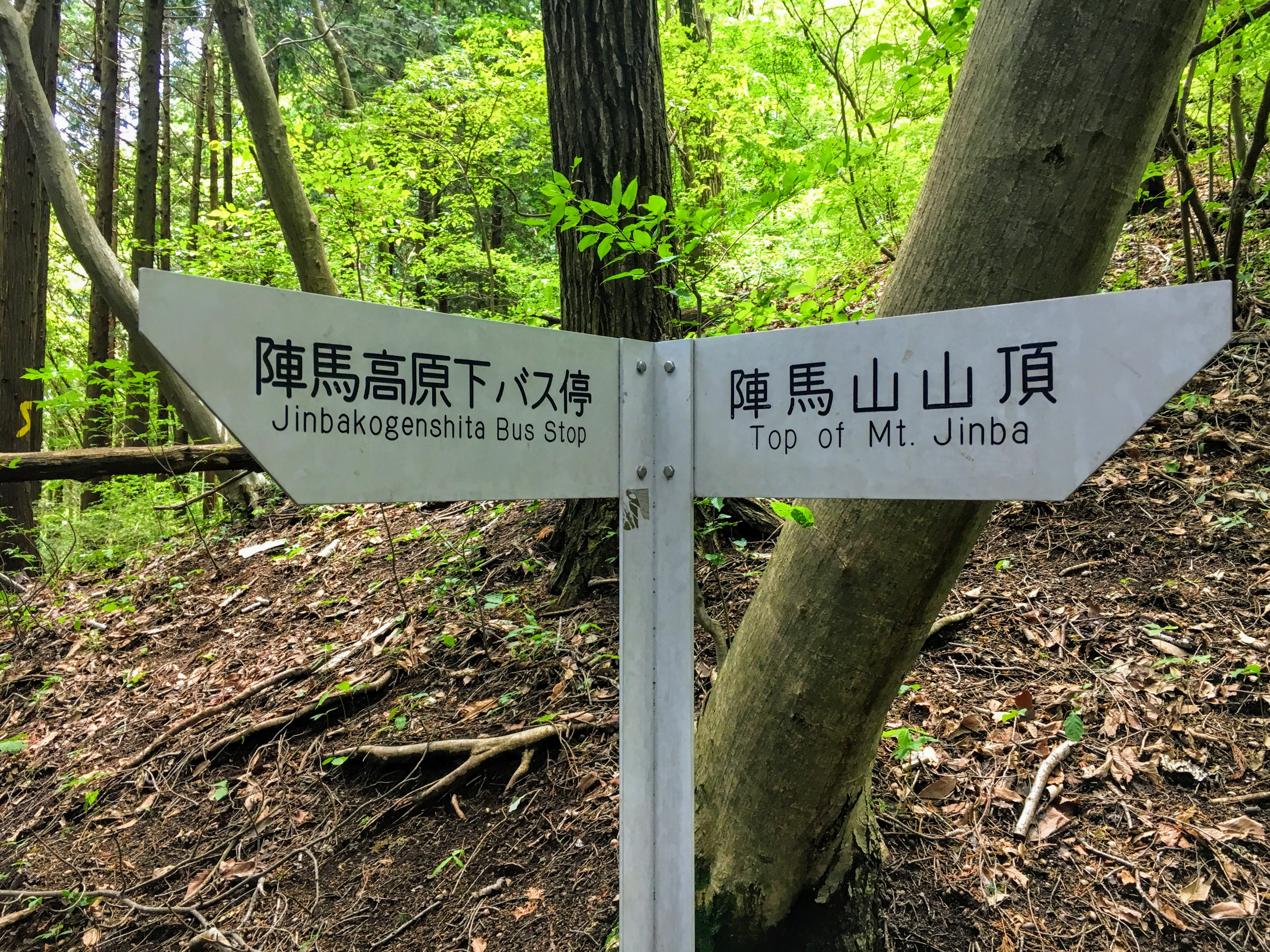 An Insider's Guide To Hiking Mt. Jinba