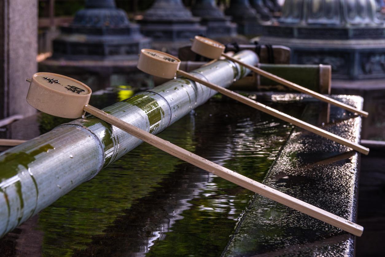 Temizu - Top 9 Shrines to Visit in Tokyo