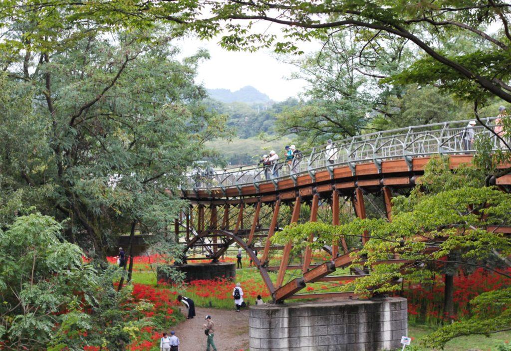 Aiai Bridge - Koma Shrine - Spider Lilies Along Koma River - The Magical Red Spider Lilies of Kinchakuda