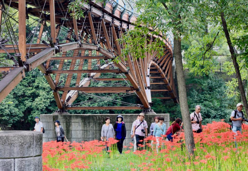 Koma Bridge 2 - Aiai Bridge - Koma Shrine - Spider Lilies Along Koma River - The Magical Red Spider Lilies of Kinchakuda