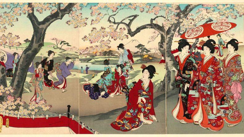 History of Hanami