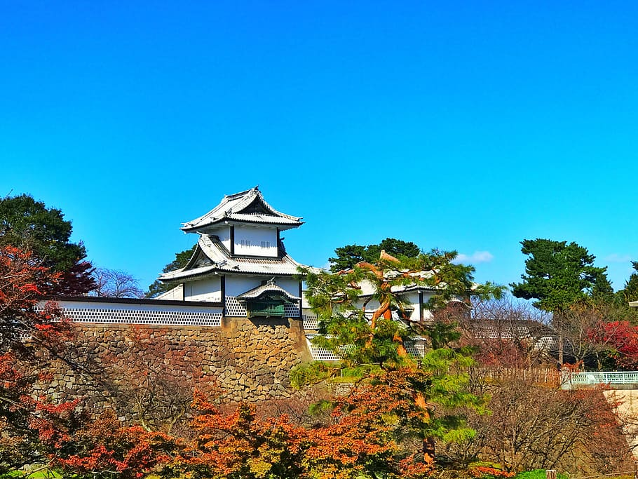 Kanazawa Castle in autumn, with red leaves and pine trees