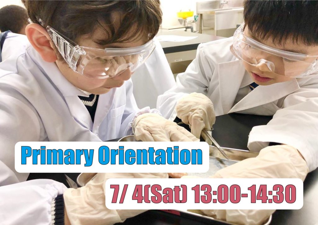 Weekend events Laurus School Primary orientation Savvy Tokyo