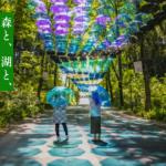 Metsa Umbrellas