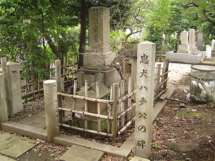 Aoyama Cemetery -Hachiko_s Grave