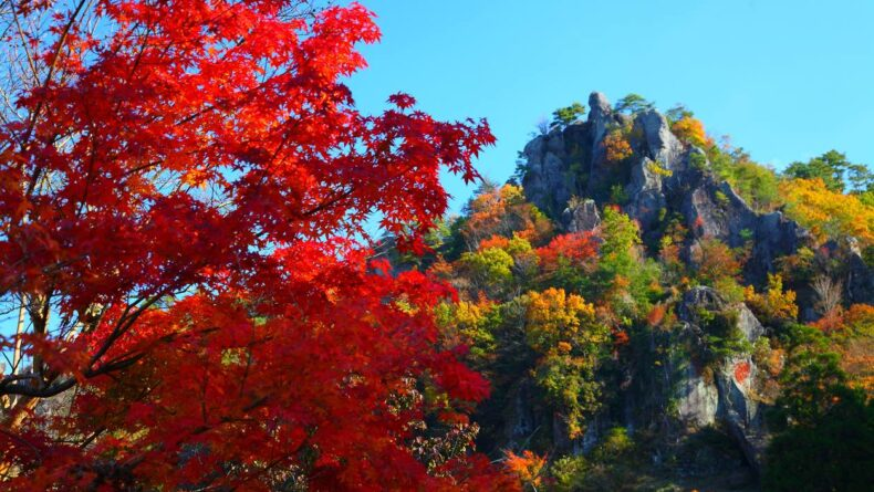 5 Hikes Around Tokyo To Catch Stunning Views Of Autumn Leaves