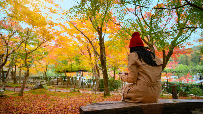 This Long Week(End): Tokyo Area Events For November 21-23