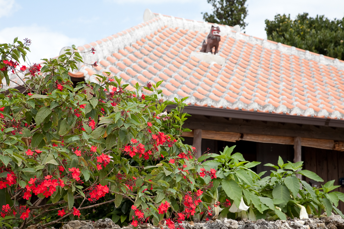Traditional Okinawa wooden houses with red-tiled roofs.