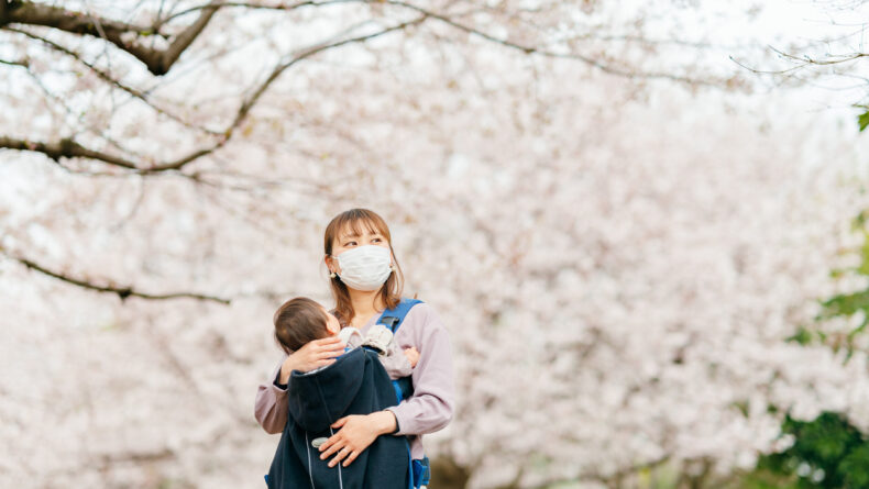 All You Need to Know About Japanese Cherry Blossoms